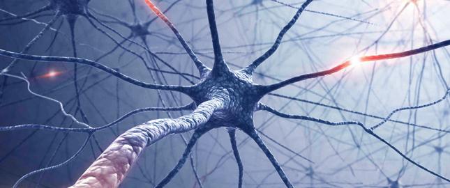 neurolog bydgoszcz prywatnie osielsko świecie