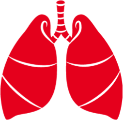 zotor płuc